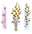 Easter symbols crocuses and pussy willow vector