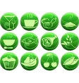 Food icons on buttons vector