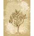Tree sketch vintage background vector