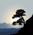 Tree silhouette on a mountain background sunrise vector