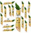 Sugarcane cartoon vector