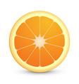 Round icon of juicy orange fruit vector