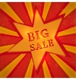 Star with text big sale vector