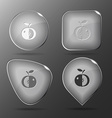 Apple glass buttons vector