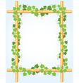 Ivy around bamboo border vector