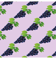 Background seamless pattern with black grape vector