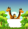 Family of giraffe cartoon with blank sign vector
