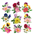 Set of the pansy and roses vector