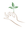 Hand and branch vector