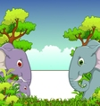 Couple elephant cartoon with forest background vector