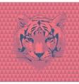 Tiger fashion vector