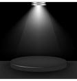 Spotlight presentation room vector