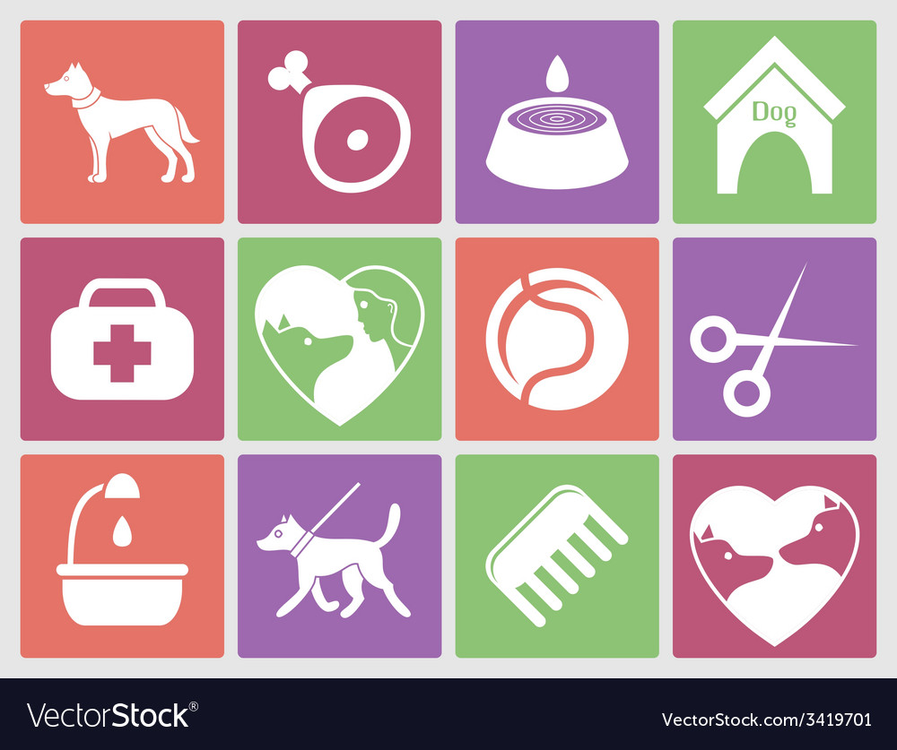 Dog icons set for web what dogs need vector | Price: 1 Credit (USD $1)