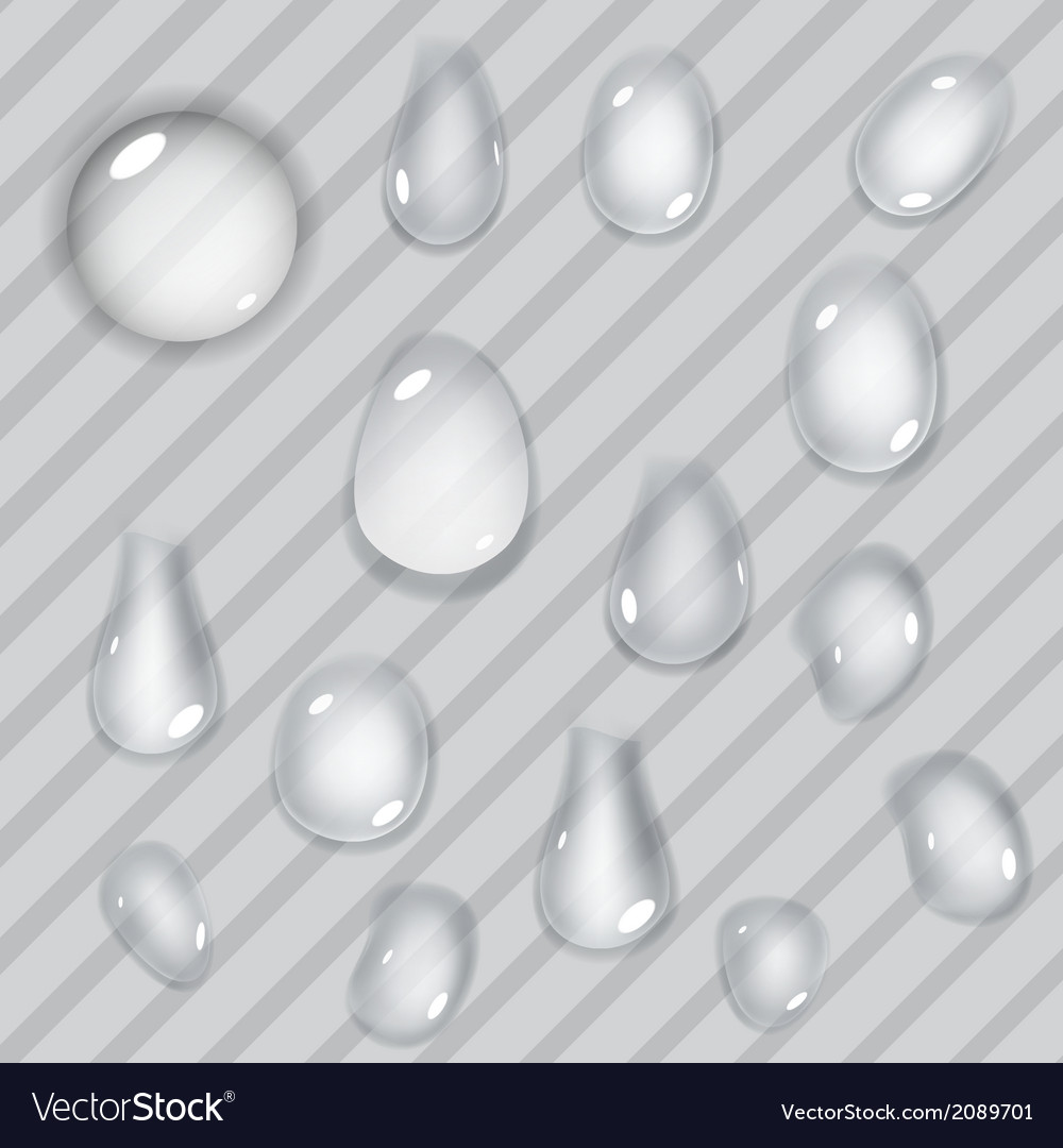 Transparent drops vector | Price: 1 Credit (USD $1)