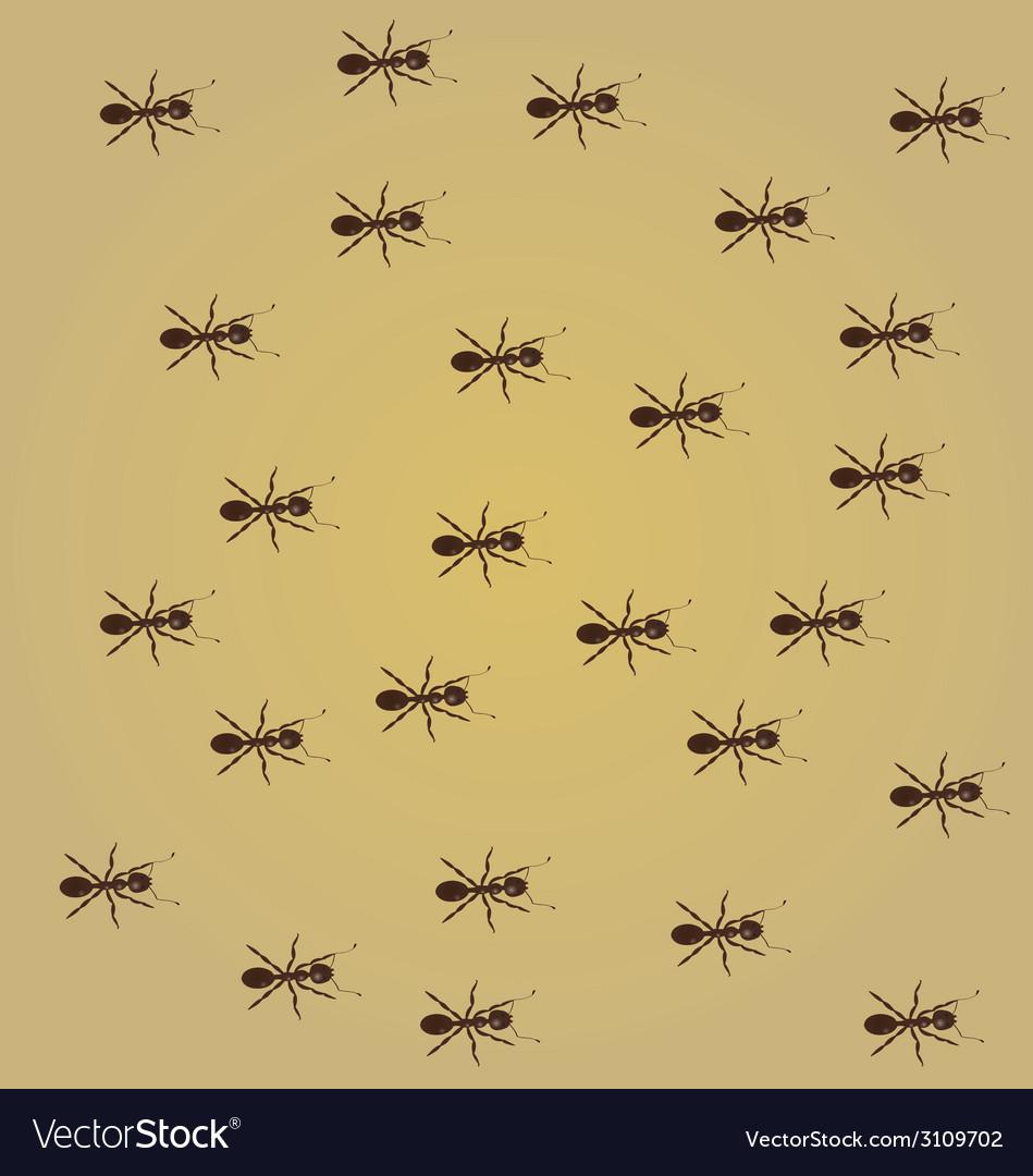 Ants vector | Price: 1 Credit (USD $1)