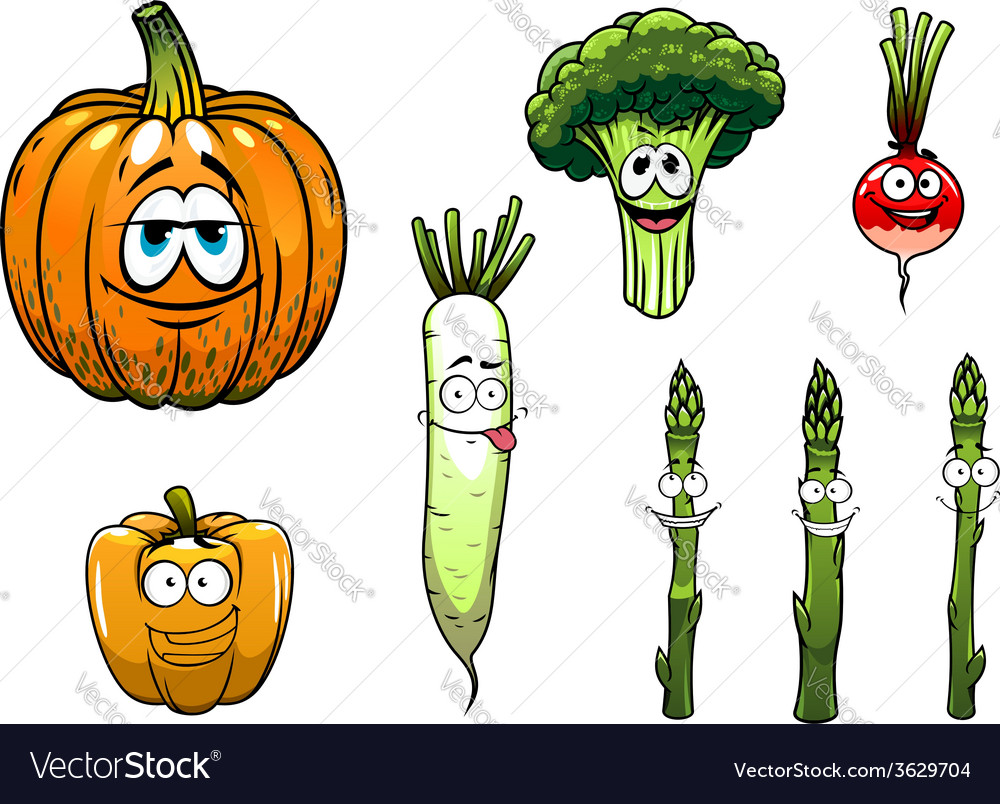Broccoli asparagus radishpumpkin and pepper vector | Price: 1 Credit (USD $1)
