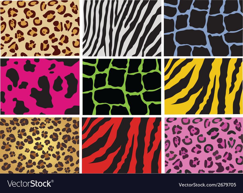Animal skin vector | Price: 1 Credit (USD $1)