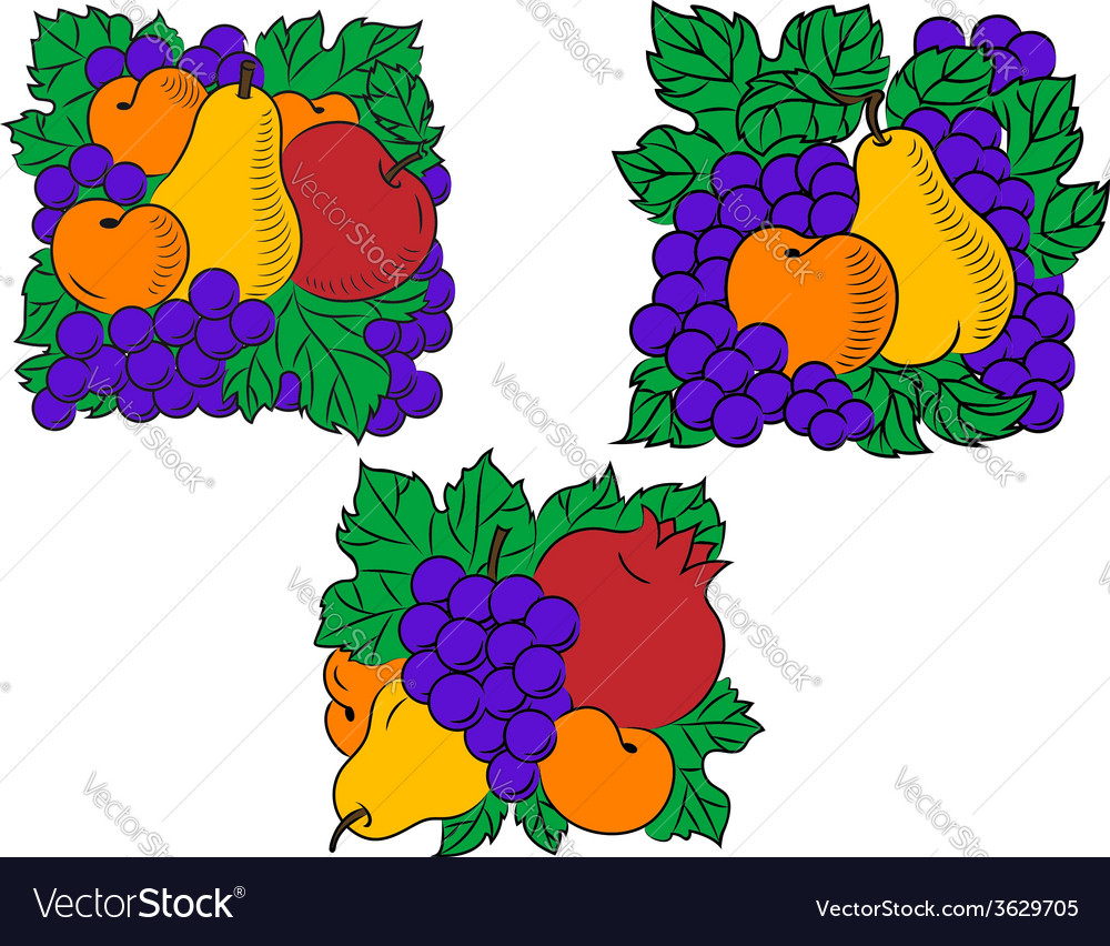 Fresh fruit compositions vector | Price: 1 Credit (USD $1)