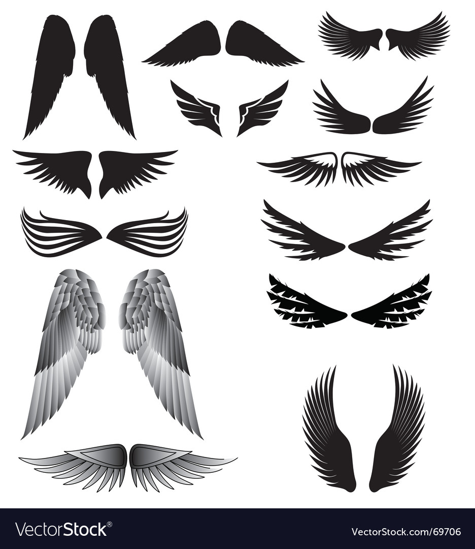 Wings silhouette vector