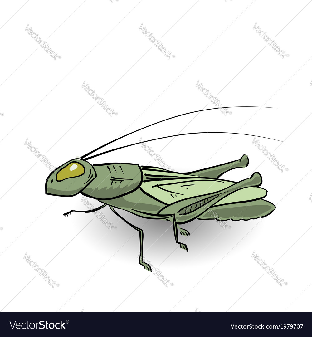Green grasshopper vector | Price: 1 Credit (USD $1)