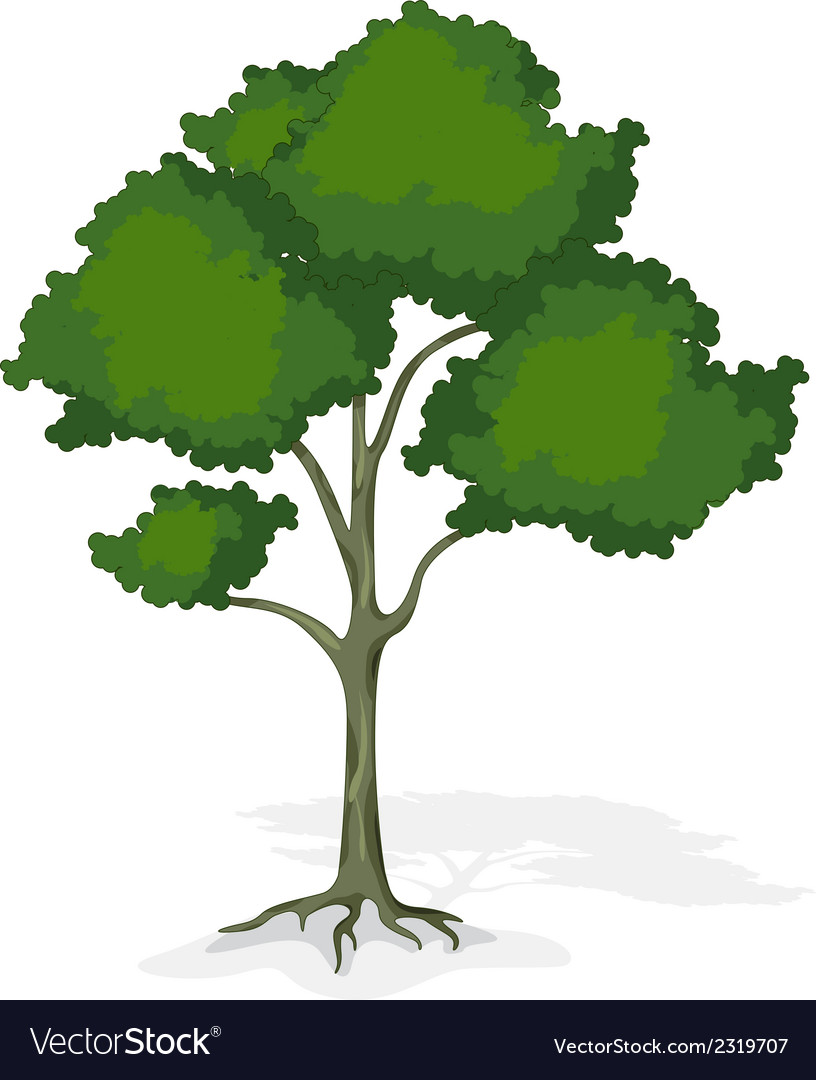 Tree cartoon for you design vector | Price: 1 Credit (USD $1)