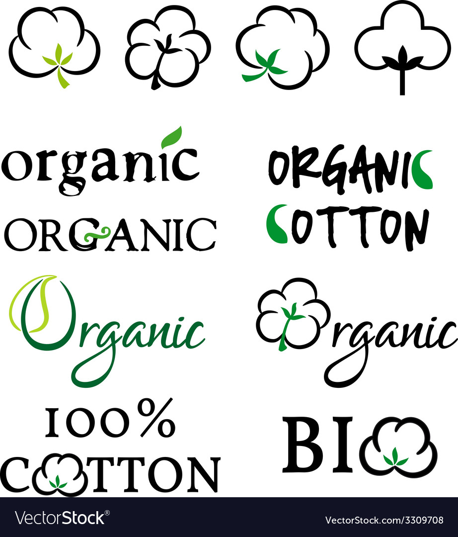 Organic cotton design elements vector | Price: 1 Credit (USD $1)
