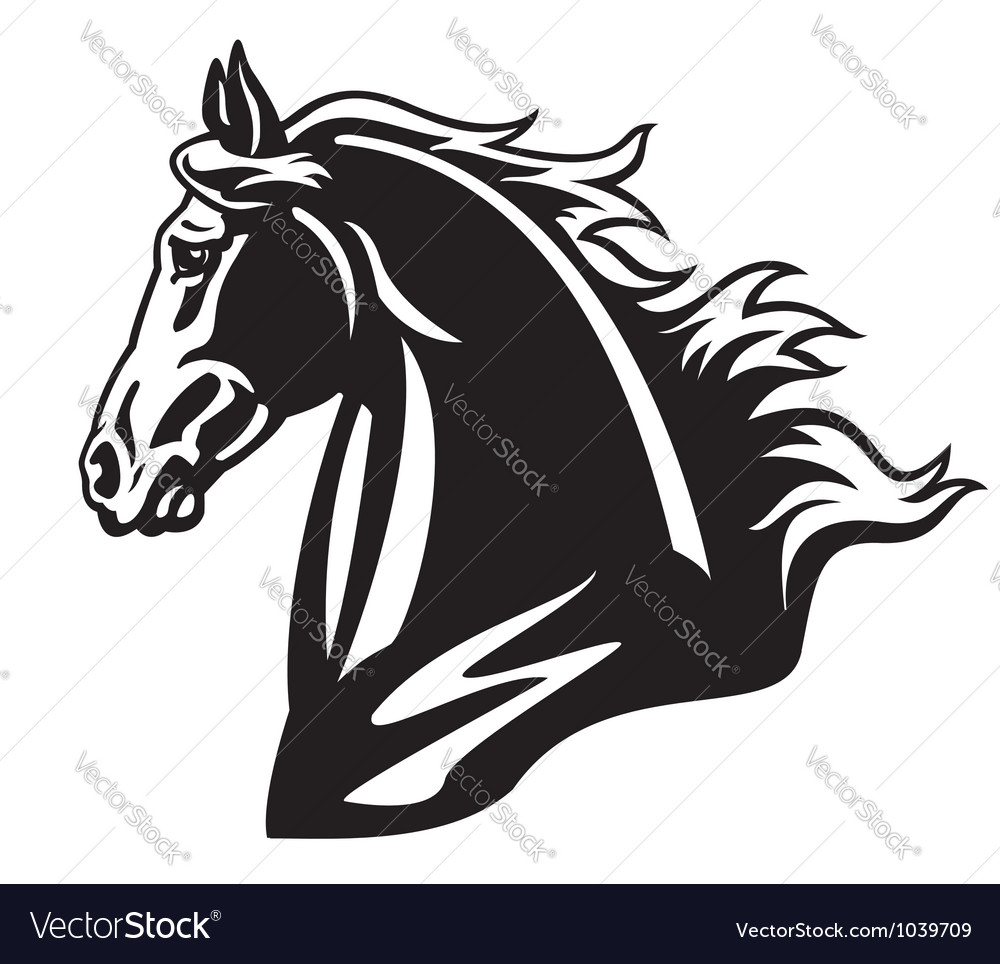 Horse head black and white vector | Price: 1 Credit (USD $1)