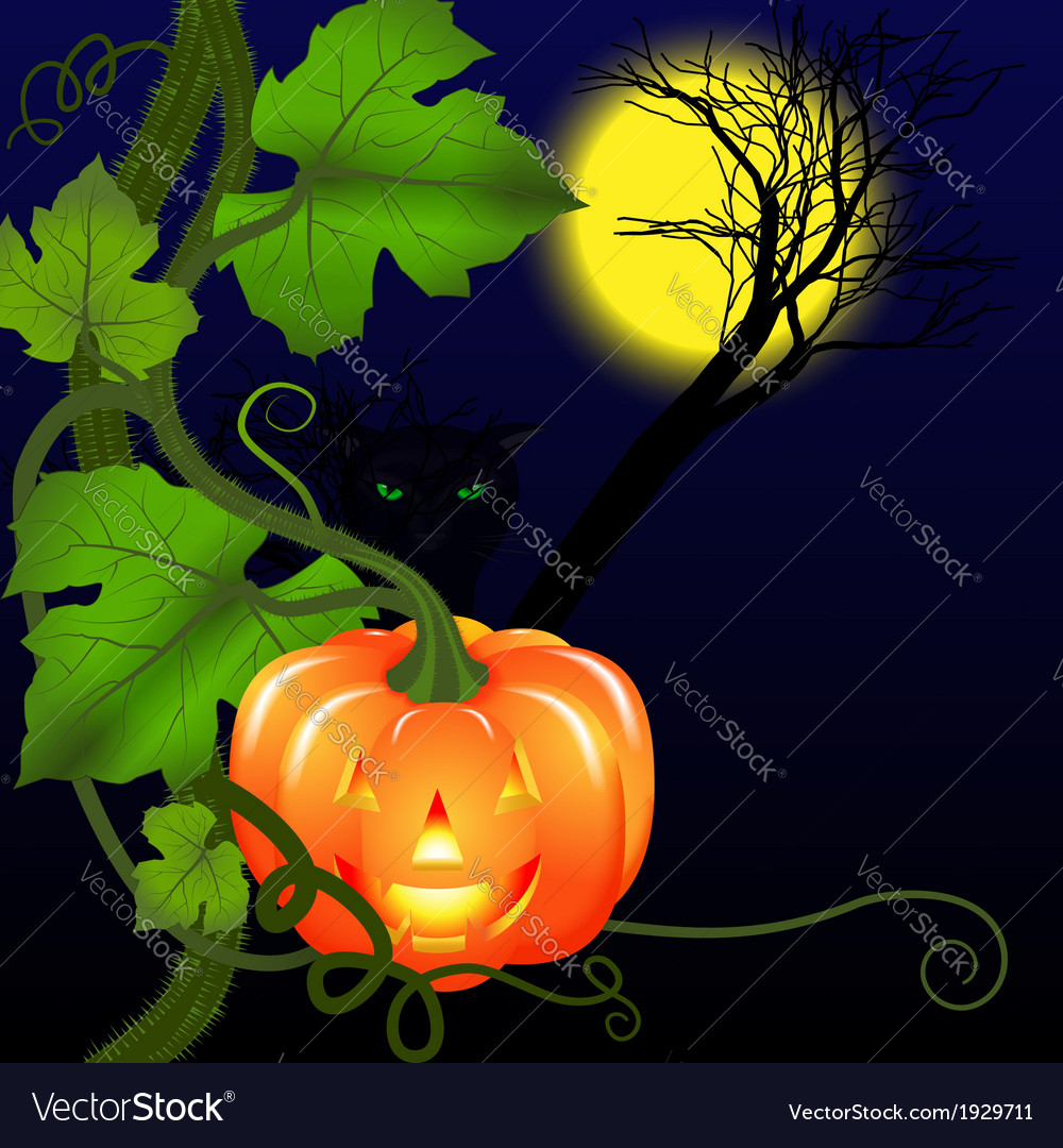 Halloween and cat vector | Price: 1 Credit (USD $1)