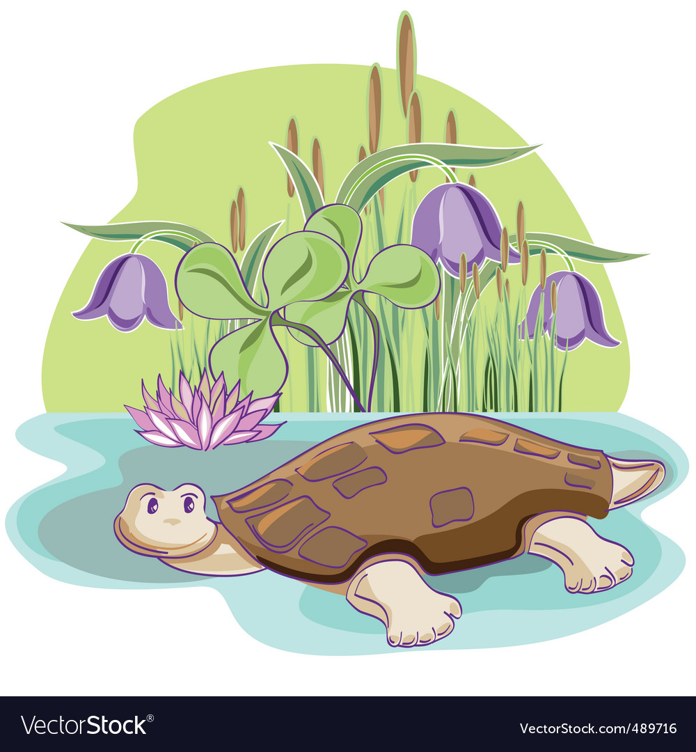 Cartoon tortoise vector | Price: 1 Credit (USD $1)