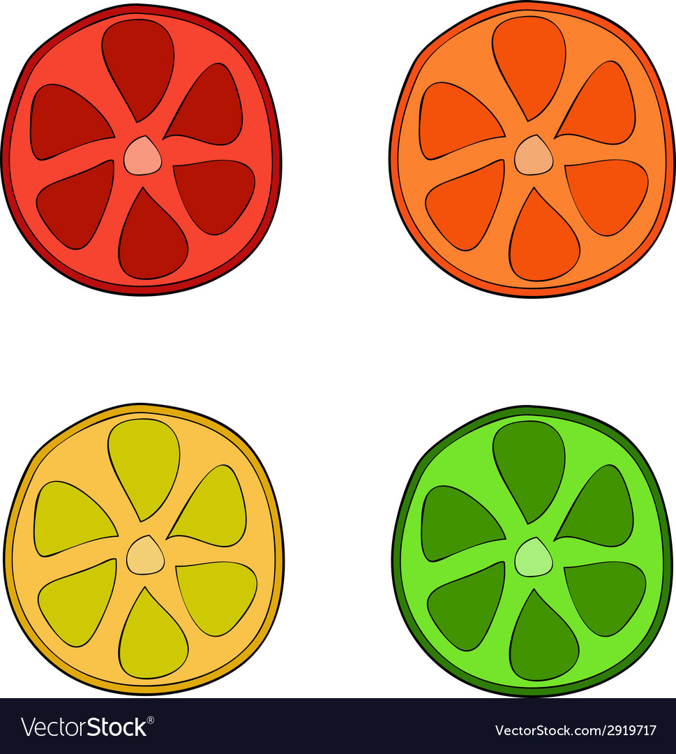 Doodle style citrus slices vector   Price: 1 Credit (USD $1)