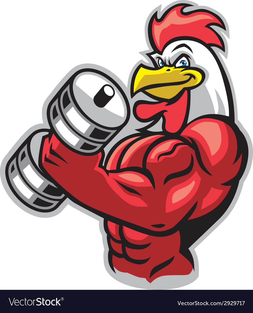 Muscle rooster holding the barbell vector | Price: 3 Credit (USD $3)