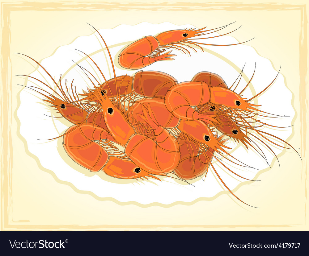 Prepared shrimps on the white plate vector | Price: 1 Credit (USD $1)