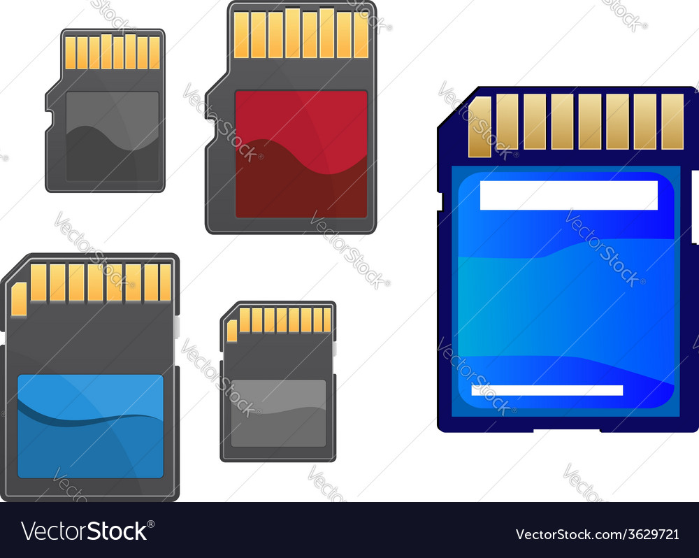 Multimedia and memory cards set vector | Price: 1 Credit (USD $1)