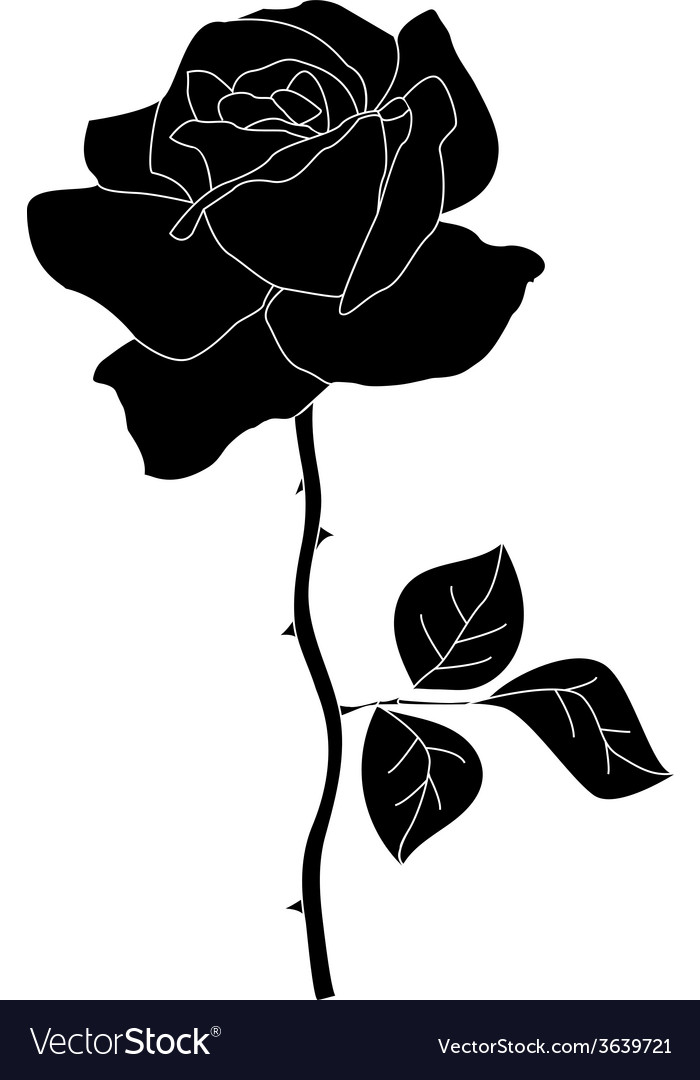 Silhouette of rose vector   Price: 1 Credit (USD $1)