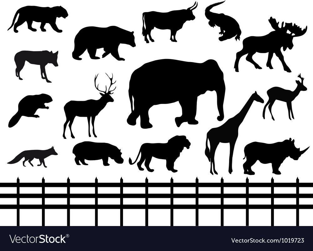 Set wild animals - vector | Price: 1 Credit (USD $1)