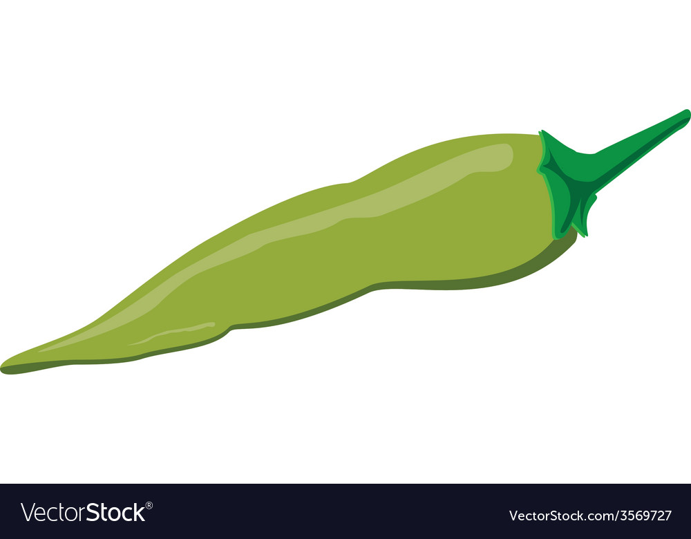 Green pepper vector | Price: 1 Credit (USD $1)
