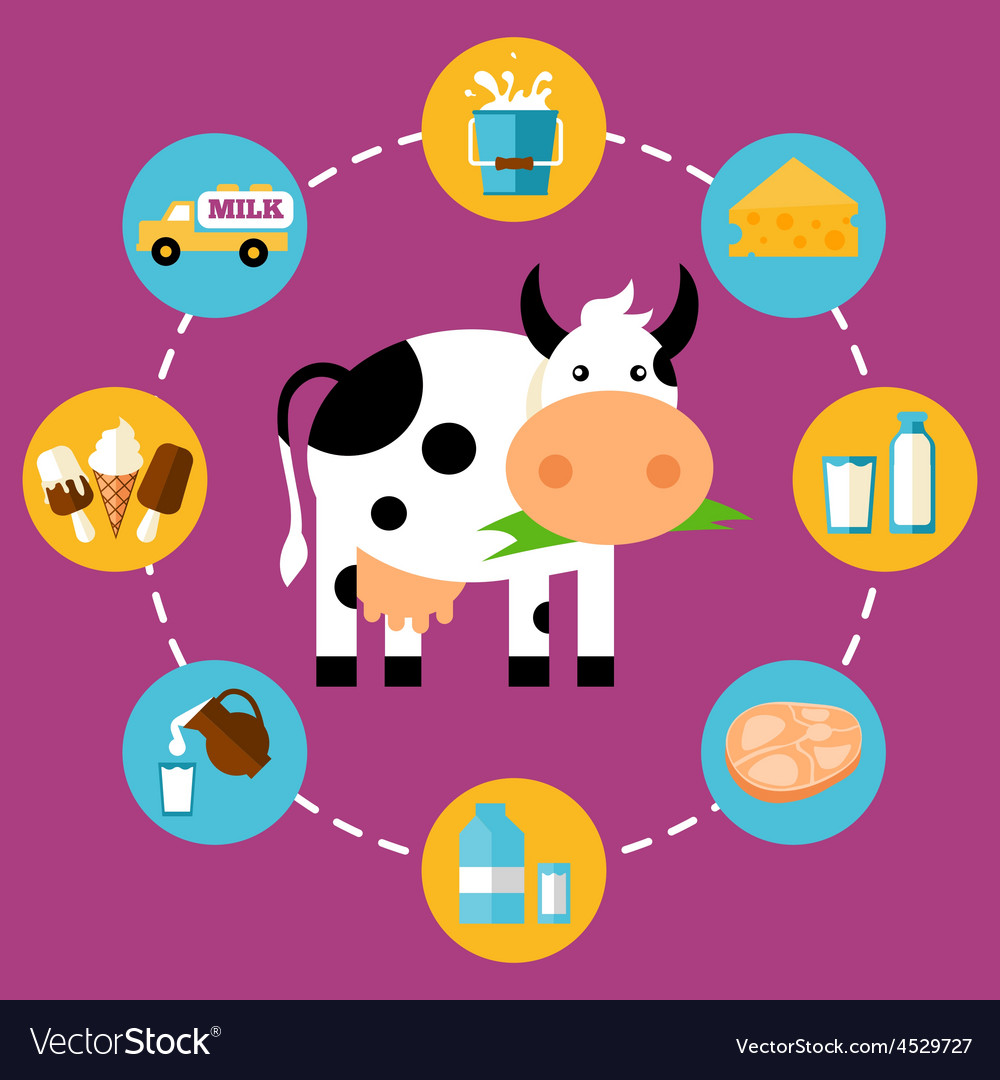 Infographics milk products vector | Price: 1 Credit (USD $1)