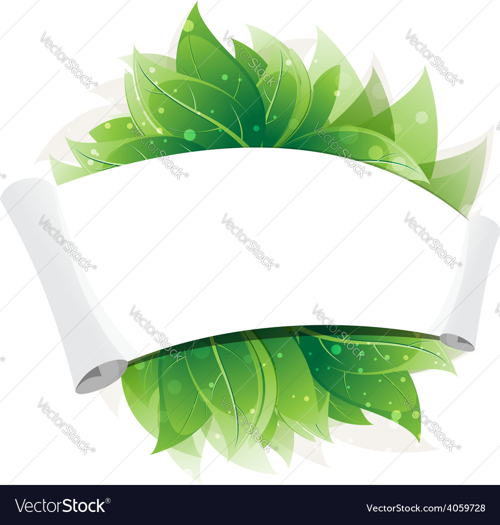 Green leaves and paper scroll vector | Price: 1 Credit (USD $1)