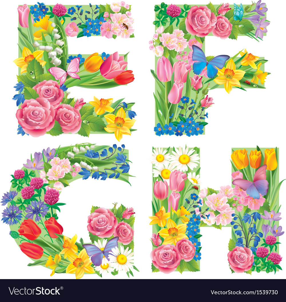 Alphabet of flowers efgh vector | Price: 3 Credit (USD $3)