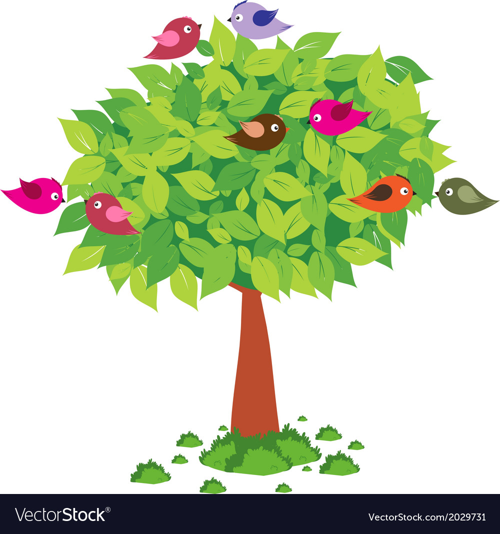 Tree and birds spring vector | Price: 1 Credit (USD $1)