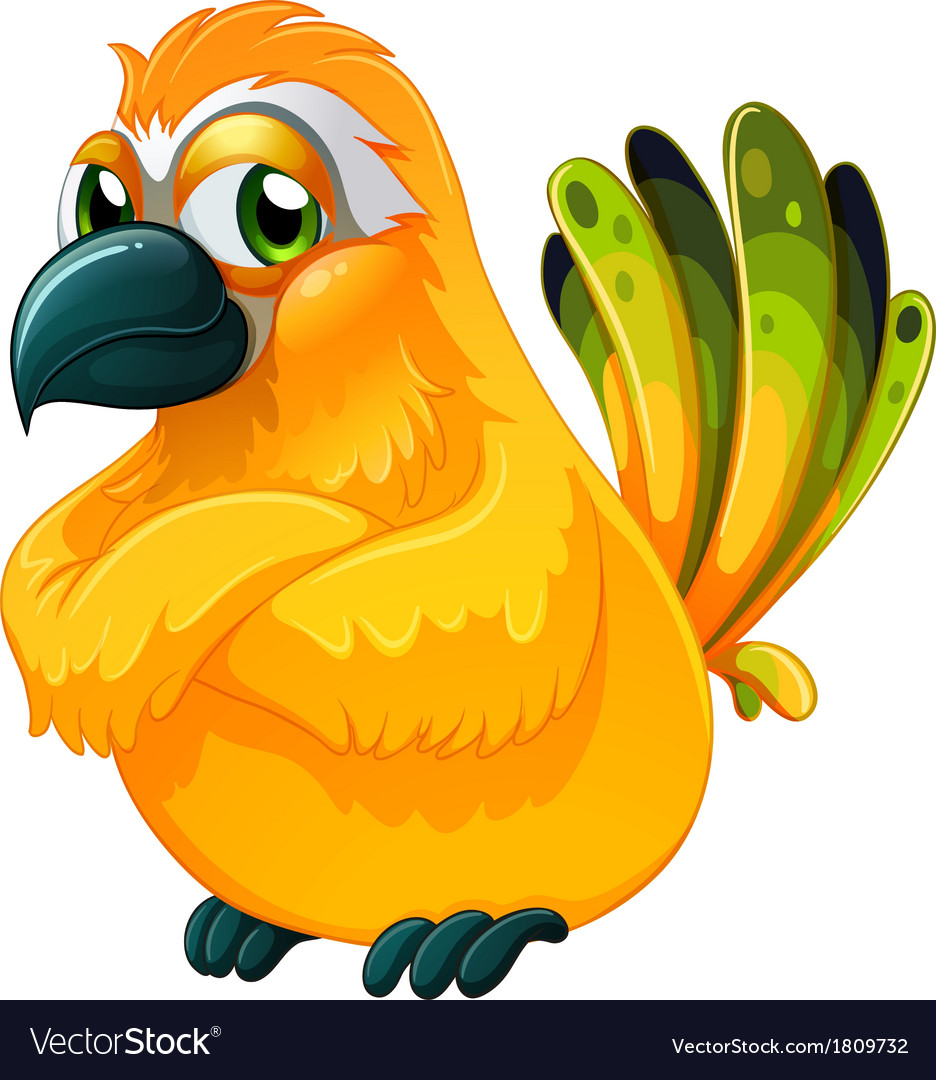 An angry bird vector | Price: 1 Credit (USD $1)