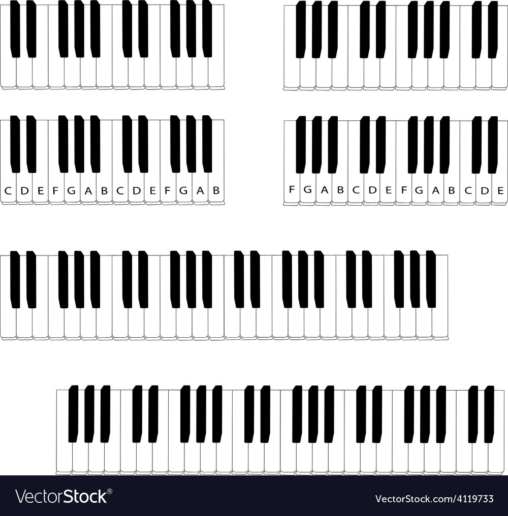 Black and white piano keyboard set vector | Price: 1 Credit (USD $1)