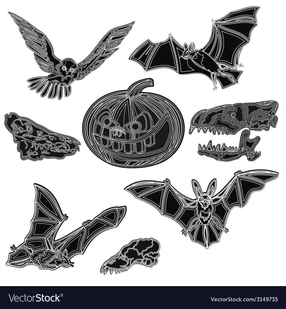 Halloween symbols pumpkin skull bat owl vector | Price: 1 Credit (USD $1)