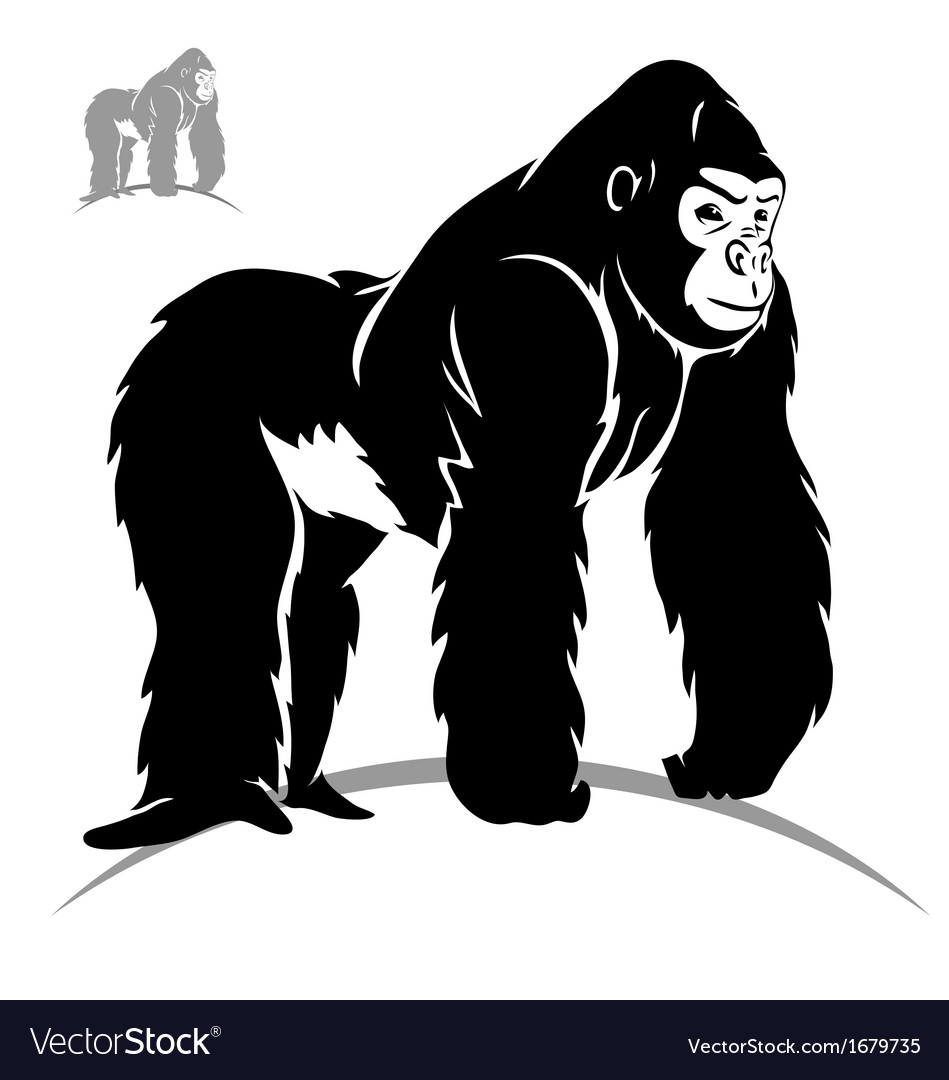 Stylized gorilla vector | Price: 1 Credit (USD $1)