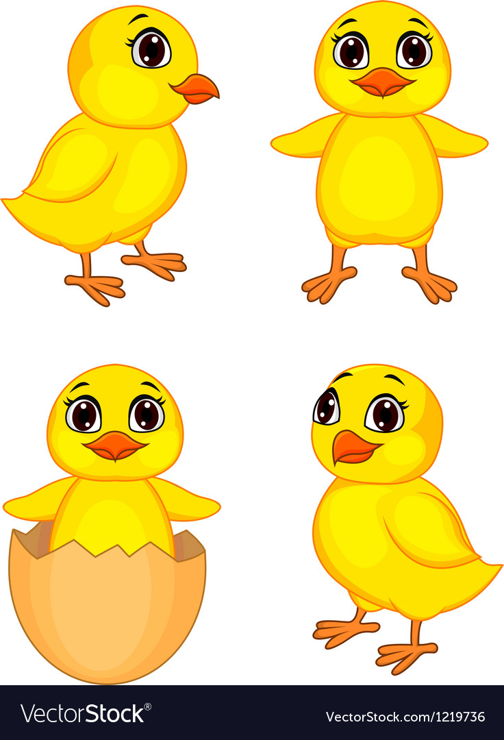 Funny chick cartoon vector | Price: 1 Credit (USD $1)