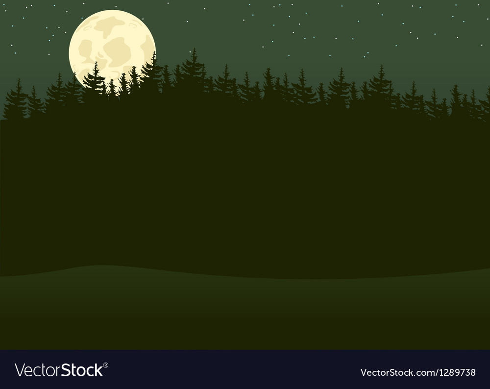 Night forest vector | Price: 1 Credit (USD $1)