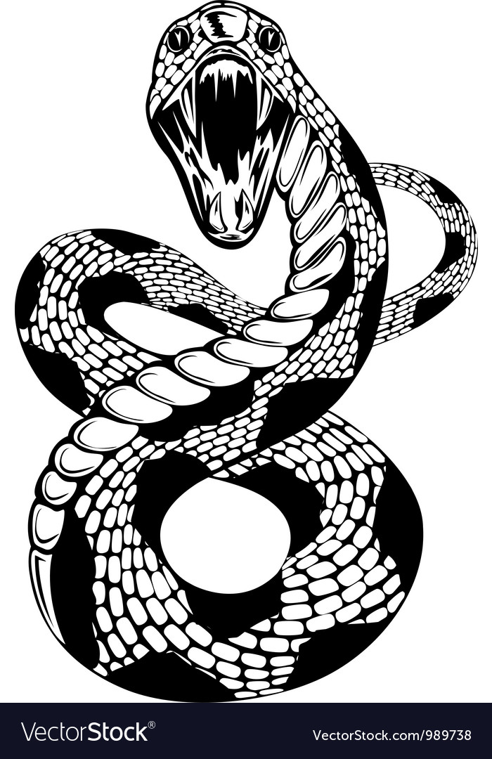 Snake attacke vector