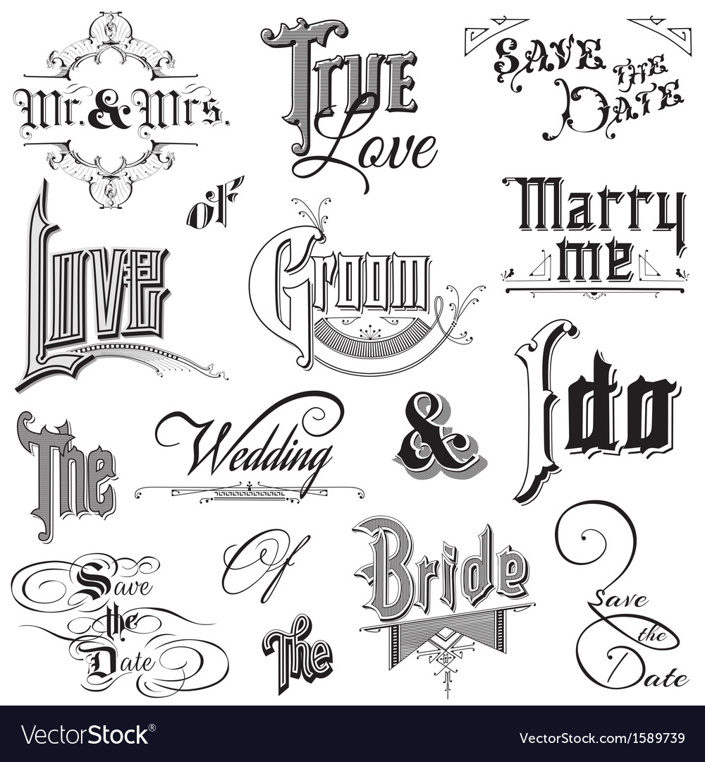 Calligraphic wedding elements vector | Price: 1 Credit (USD $1)