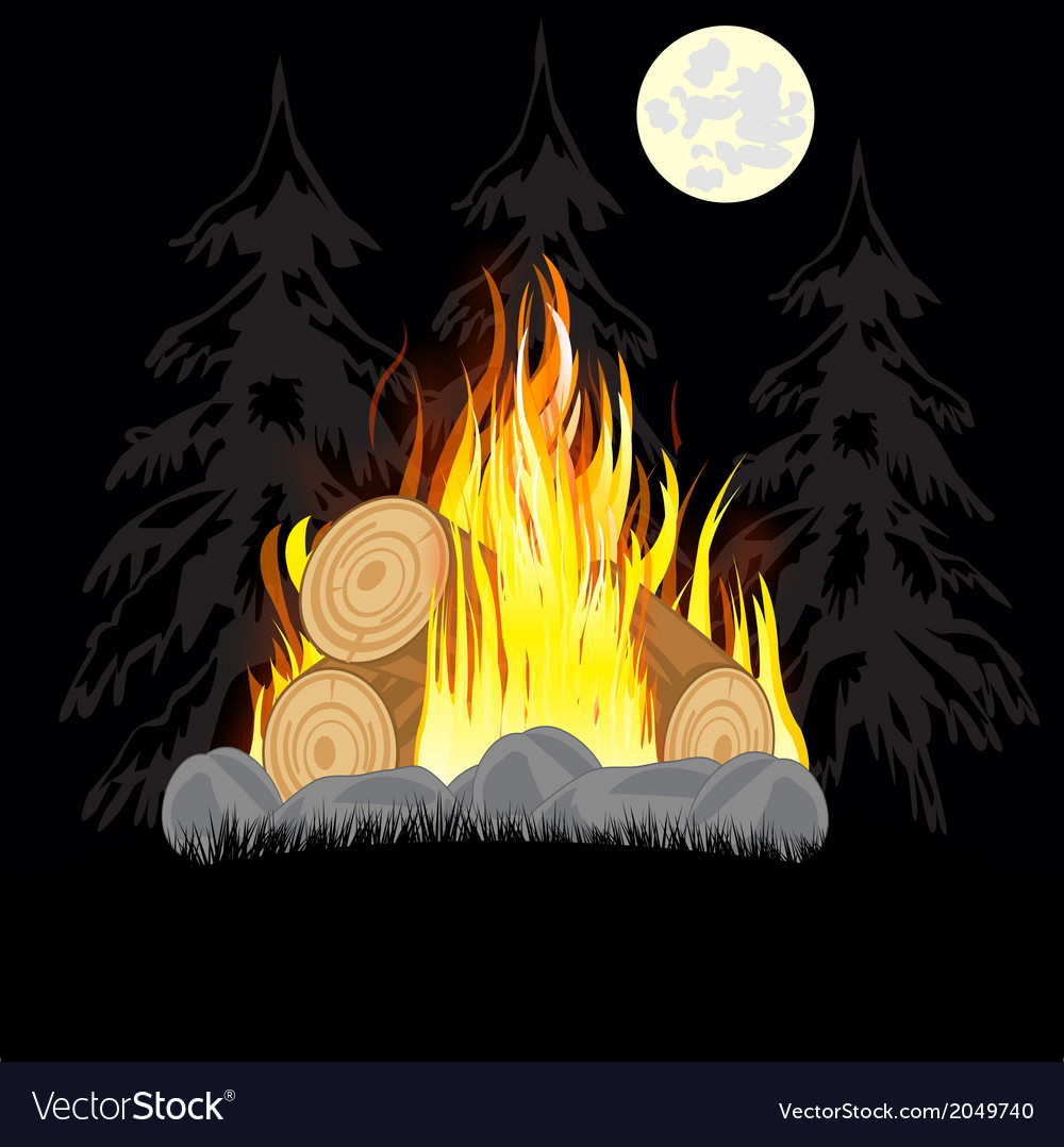 Campfire in wood vector | Price: 1 Credit (USD $1)