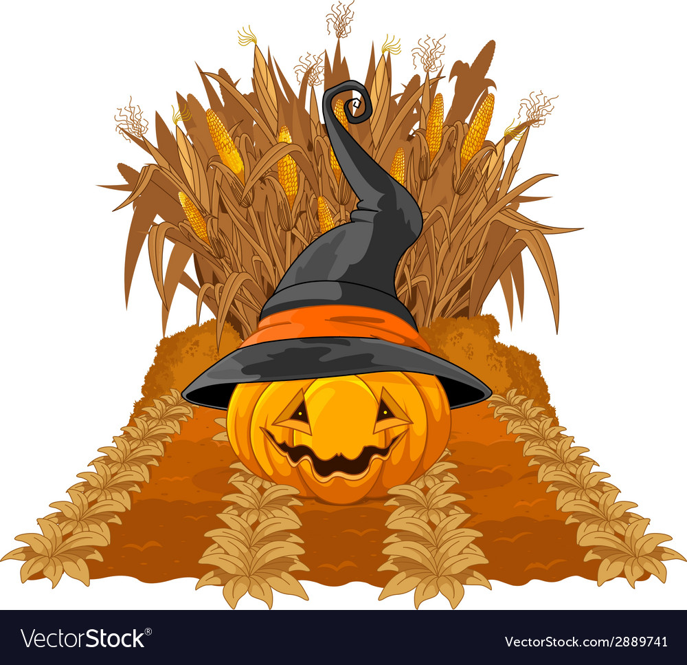 Pumpkin on corn maze vector | Price: 3 Credit (USD $3)